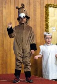 Nativity 9 g