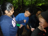 Forest Schools (14)