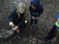 Forest Schools (17)