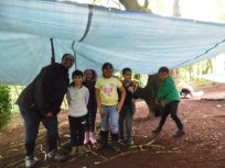 Forest Schools (20)