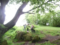 Forest Schools (24)