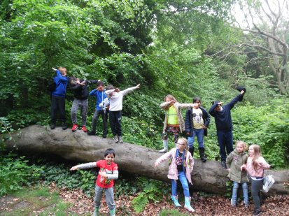 Forest Schools (25)