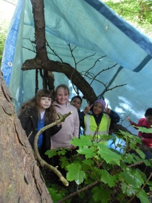 Forest Schools (27)
