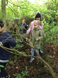Forest Schools (3)