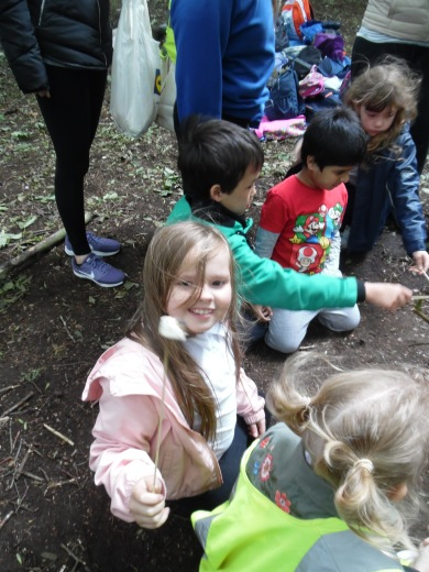 Forest Schools (7)